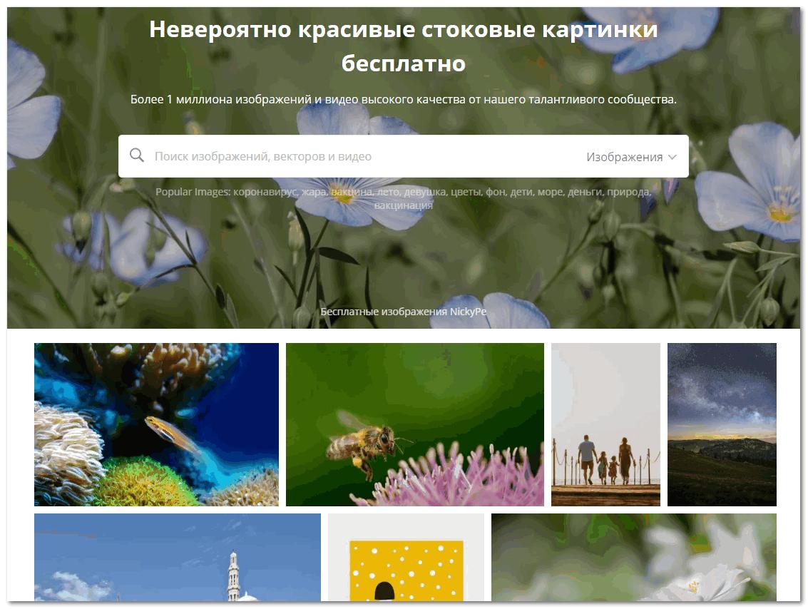 Interfeys pixabay