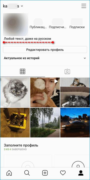 Результат ввода имени в профиле Instagram